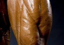 Dicas Para Melhorar o Quadríceps