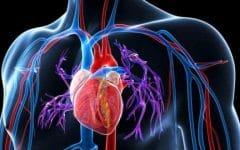 Como Baixar a Pressão Arterial Naturalmente