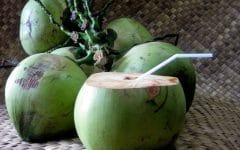 Os 10 Benefícios da Água de Coco Para Saúde