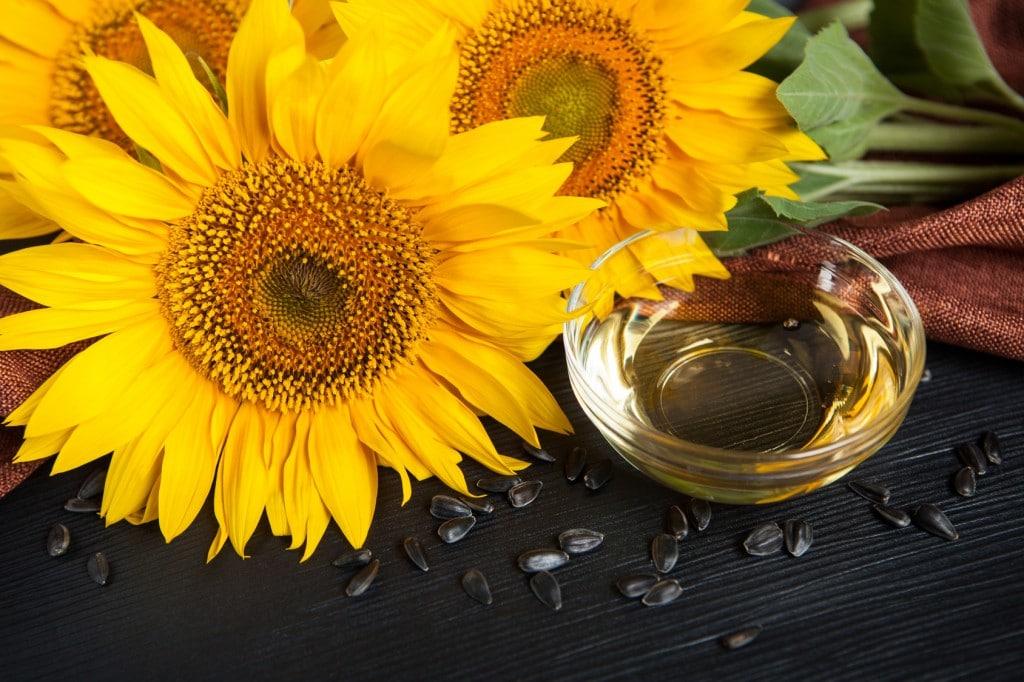 Beneficios do oleo de Girassol