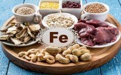 Os 22 Alimentos Ricos em Ferro