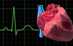 Bloqueio Cardíaco – O que é, Causas e Tratamentos