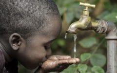 Cólera – O que é, Causas, Sintomas e Tratamentos