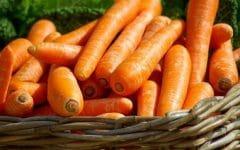 Os 15 Benefícios da Cenoura Para Saúde