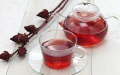 Os 10 Benefícios da Rosa Castanha Para Saúde