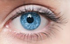 Degeneração Macular – O que é, Causas, Sintomas e Tratamentos