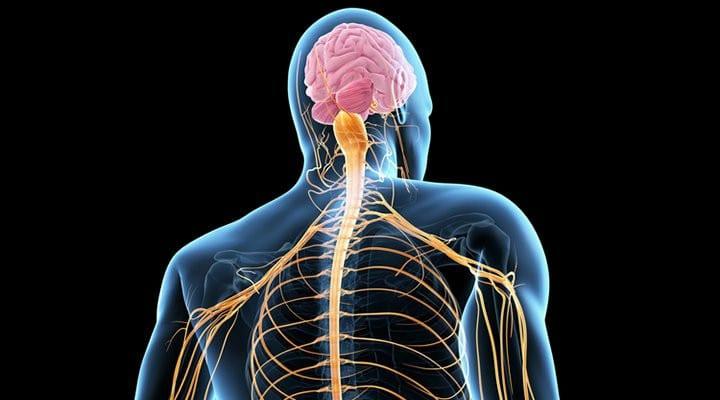 Esclerose Lateral Amiotrófica