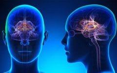 Síndrome Aicardi Goutieres – Causas e Tratamentos