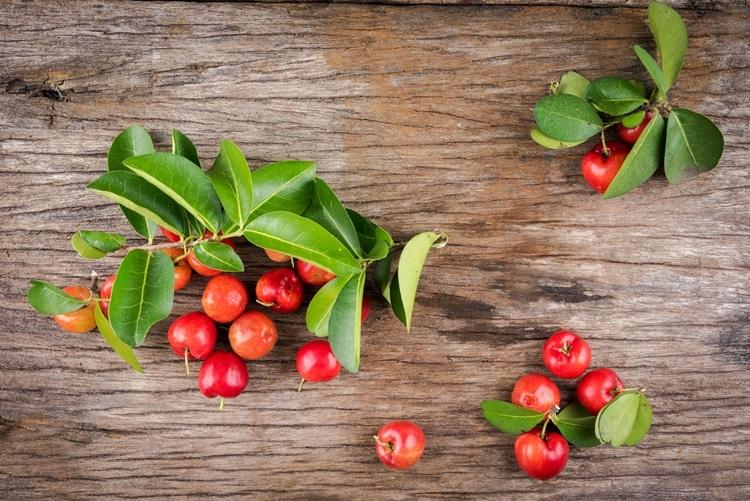 Beneficios da Acerola