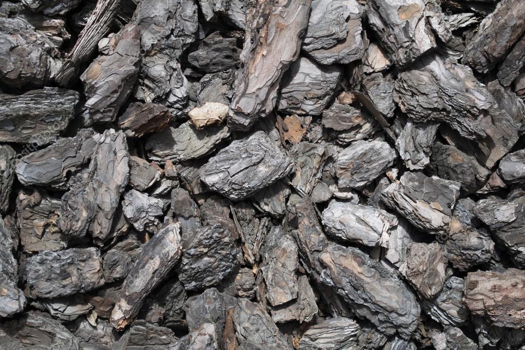 Resultado de imagem para extrato casca de pinheiro maritimo
