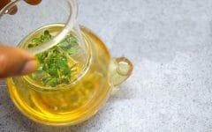 Os 10 Benefícios do Chá de Brahmi Para Saúde