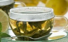 Os 10 Benefícios do Chá Boldo do Chile Para Saúde