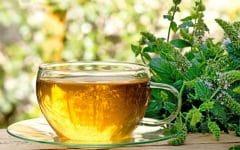 Os 15 Benefícios do Chá de Hortelã Para Saúde!
