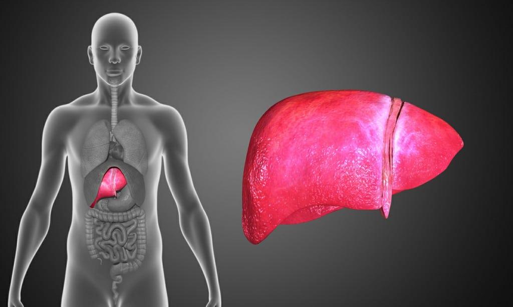 Sintomas da Hepatite B