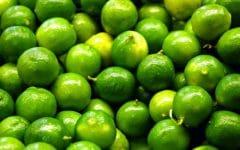 Os 15 Benefícios do Limão Para Saúde