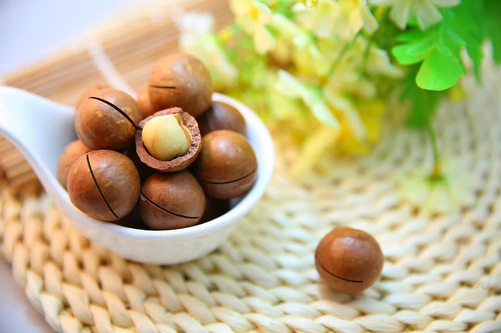 Benefícios da Vitamina de Macadâmia