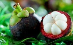 Os 15 Benefícios do Mangostão Para Saúde