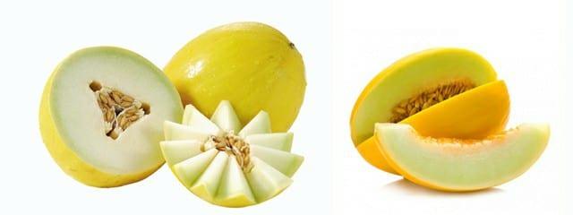 Resultado de imagem para 10 benefícios do melão para a saúde