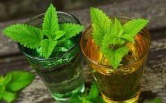 Os 12 Benefícios do Óleo de Lemongrass Para Saúde