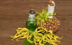 Os 10 Beneficios do Óleo de Ylang Ylang Para Saúde