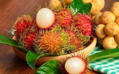 10 Benefícios do Rambutan – Para que Serve e Propriedades do Rambutan!