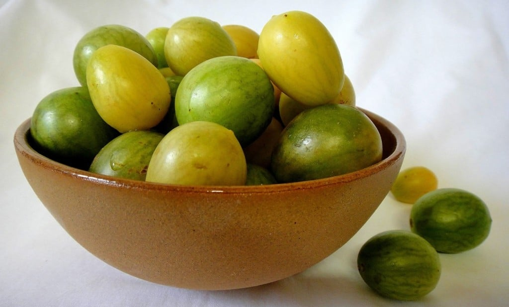 Benefícios do Umbu
