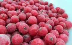 Os 10 Benefícios da Vitamina de Groselha Para Saúde