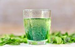 Suco de Hortelã Para Combater Celulites e Gordura Localizada
