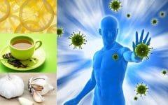 Os 10 Alimentos que Ajudam a Aumentar a Imunidade