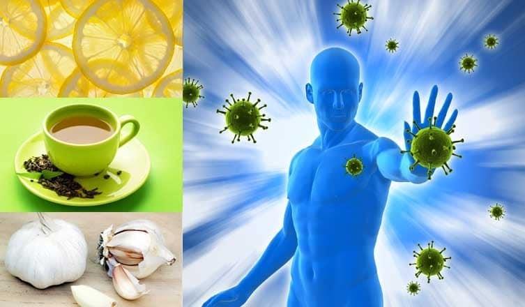Alimentos que Ajudam a Aumentar a Imunidade