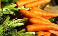 Os 10 Benefícios da Cenoura Para Saúde