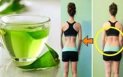 Como Emagrecer com a Dieta do Chá Verde!