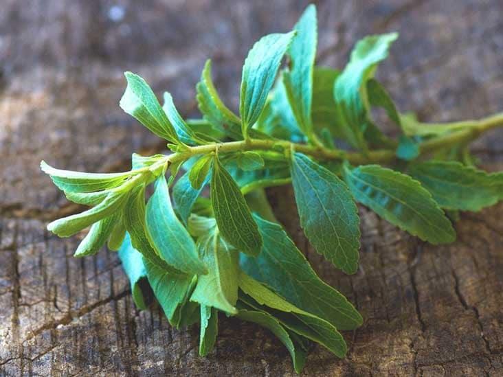 Benefícios da Folha de Stevia