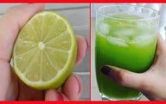 As 8 Receitas Com Limão Para Perder Peso Rapidamente