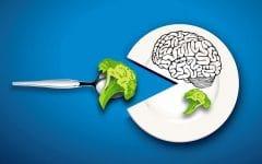 Os 10 Alimentos que Ajudam a Manter o Cérebro Saudável