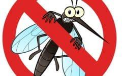 → Super Mata Mosquitos Onde Comprar? 【100% SEGURO】