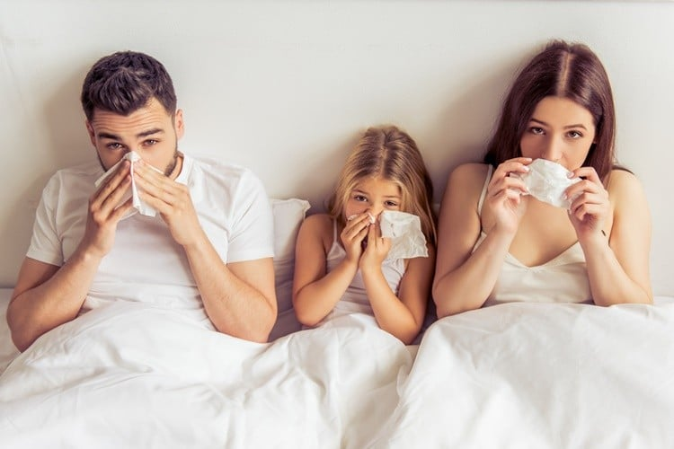 Remedios Caseiros Para Combater a Gripe