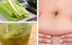 As 24 Receitas Caseiras Para Derreter a Gordura da Barriga