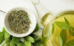 Os 5 Benefícios do Chá Verde Para a Pele e Cabelo!