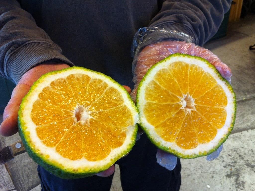 Fruta Ugli