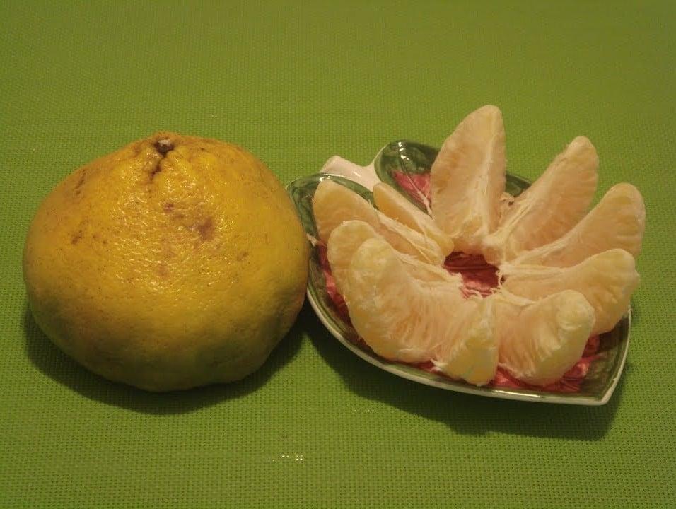 Benefícios da Fruta Ugli