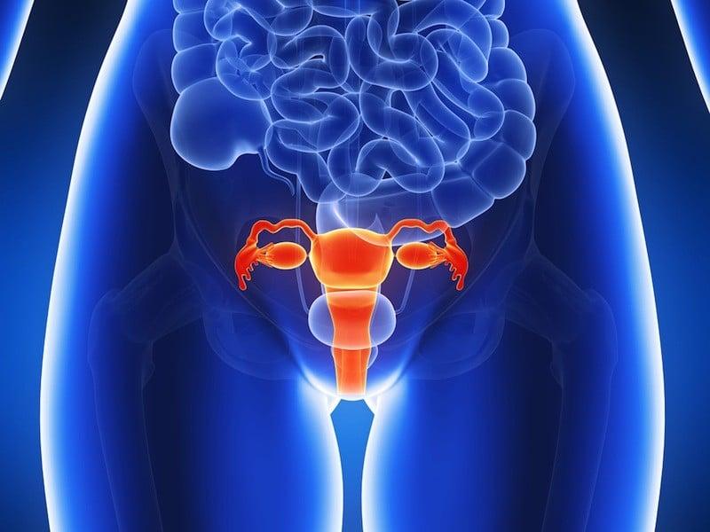 infecção vaginal