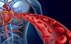 Remédios Naturais Para Estimular a Circulação Sanguínea!