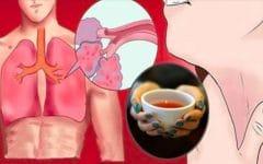 Chá Para Curar a Asma e Expelir a Fleuma dos Pulmões!